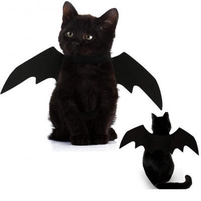 Mejor Disfraz Gato